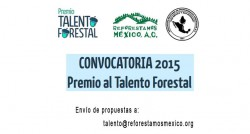 Talento forestal